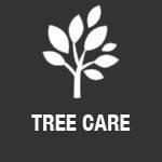 Vermeer tree care equipment for sale